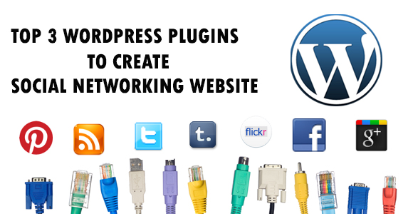 Top 3 WordPress plugins to create your own niche Social Networking website - Image 1