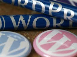 Why Word Press Is Popular Among Professionals and Beginners? - Image 1