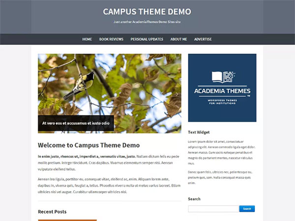 10 Awesome education Free WordPress Website Themes - Image 7