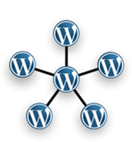Wordpress Multisites: All You Need to Know - Image 1
