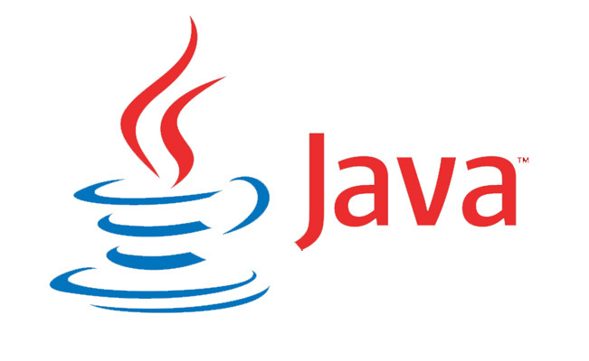 The Importance of Coding and Nurturing Students for sharp edged Java Development - Image 1