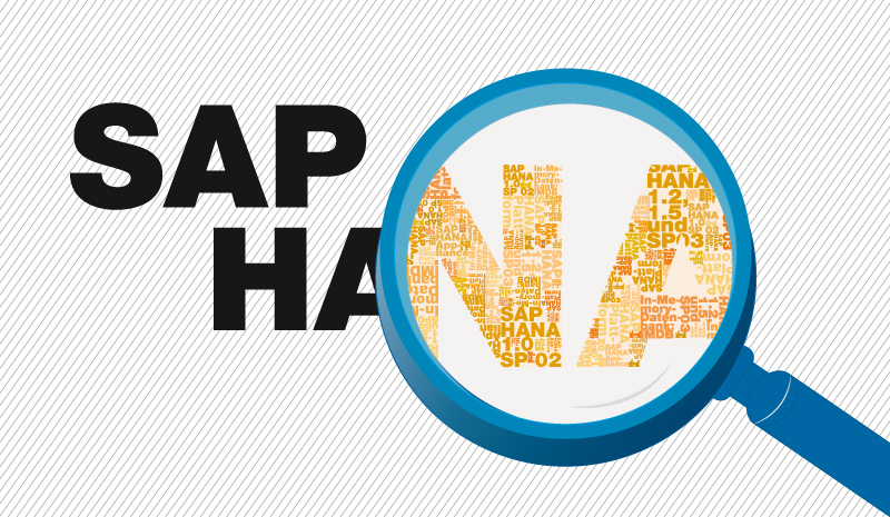 SAP AG Unveils Its HANA Cloud Platform- Businesses to Take Full Advantage of It - Image 1