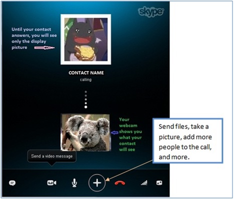 Basic Guide on How to use Skype - Image 28