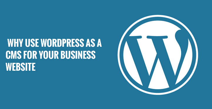 Top Reasons to Use WordPress as a CMS for Your Business - Image 1
