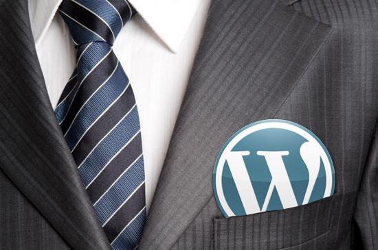Do Proficient Developers Always Work Wonders for Custom WordPress Development? - Image 1