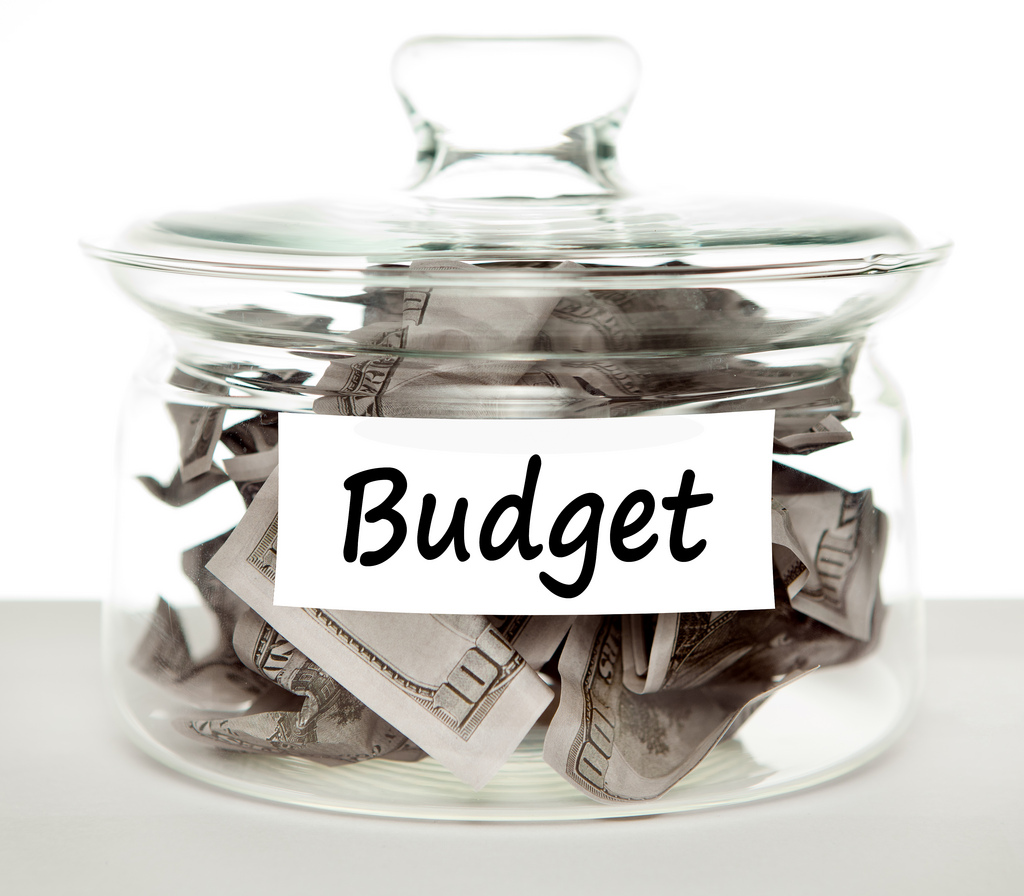 5 Critical Decisions To Consider When Developing Your Mobile Application Budget - Image 1