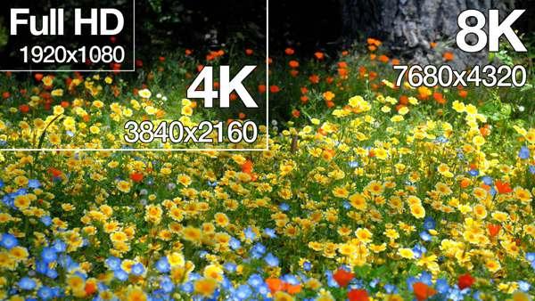 Video Resolutions: 720p vs 1080p vs 2K vs 4K vs 8K - 16656