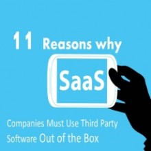 11 Reasons Why SaaS Companies Must Use Third Party Software Out of the Box - Image 2