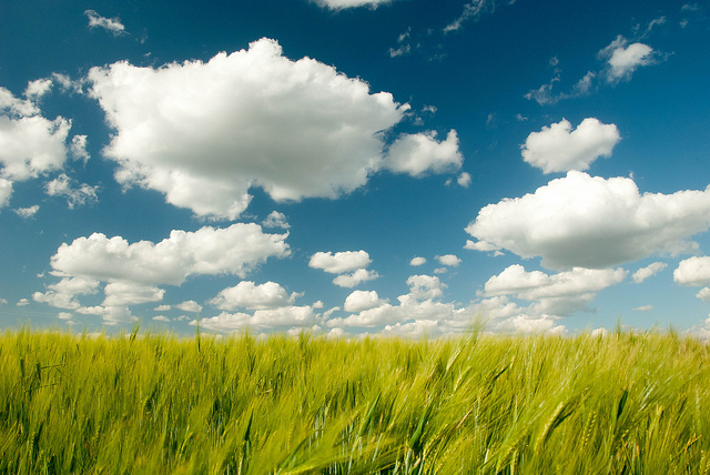 CRM In The Cloud: 4 Signifiers Of A Business Game Changer - Image 1