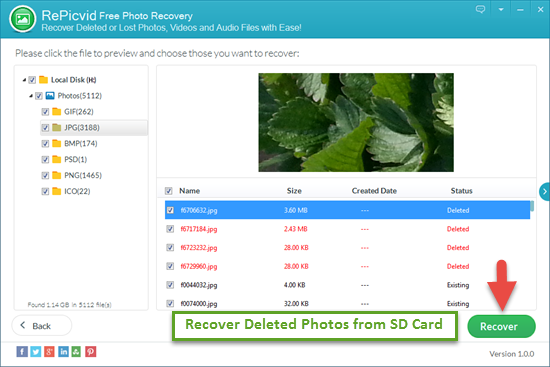 Free Way to Recover Deleted/Formatted/Lost Pictures from SD Memory Card - Image 3