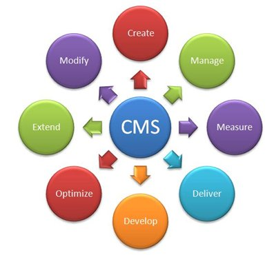 Choosing a Website Content Management System - Image 1