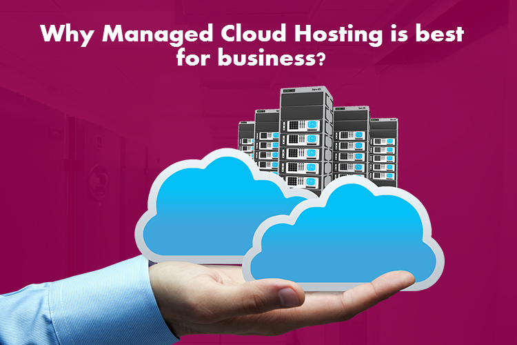 Why Managed Cloud Hosting is best for business? - Image 1