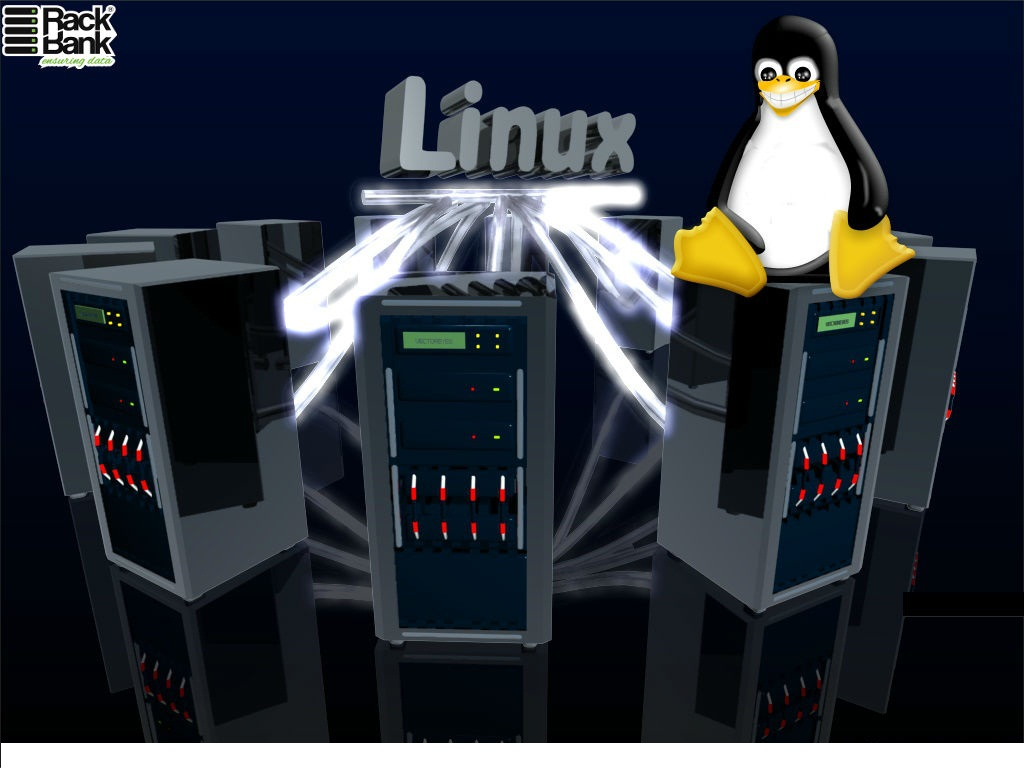 Why to Choose Linux for Your Dedicated Server? - Image 1