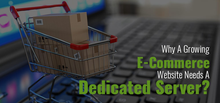 Why A Growing E-Commerce Website Needs A Dedicated Server? - Image 1