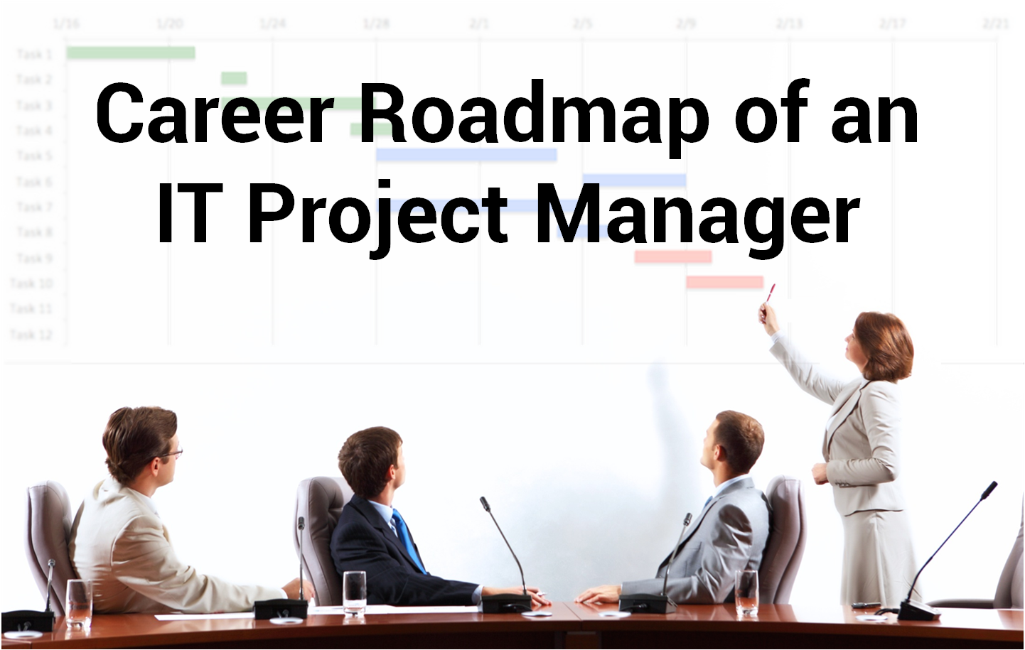 Career Roadmap of an IT Project Manager - Image 1