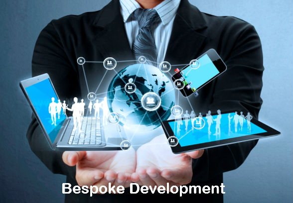 8 Reasons Businesses Should Adopt Bespoke Development - Image 1