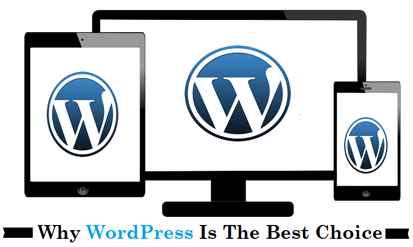 Why WordPress Is The Best Choice - Image 1