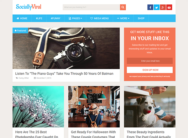 10 Best WordPress Themes which are SEO Ready - Image 1