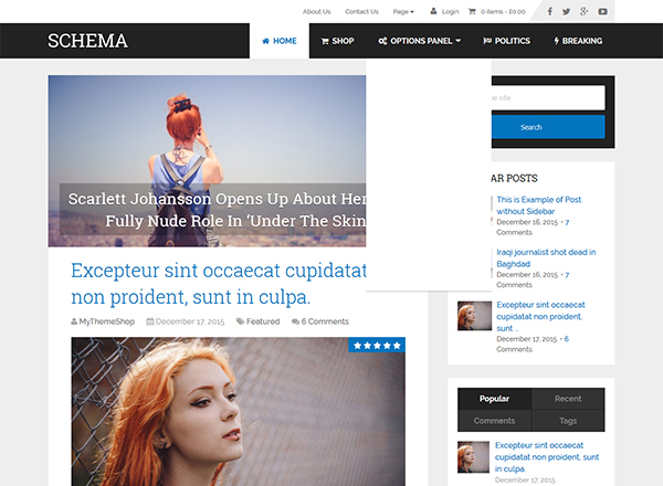 10 Best WordPress Themes which are SEO Ready - Image 2