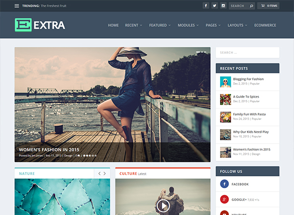 10 Best WordPress Themes which are SEO Ready - Image 7