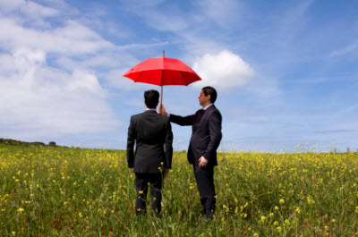 Insurance Agents Flourish With Dominant SEO Solutions - Image 1