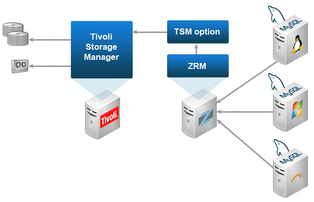 Realize Quantifiable Cost Savings with IBM Tivoli Storage Manager - Image 1