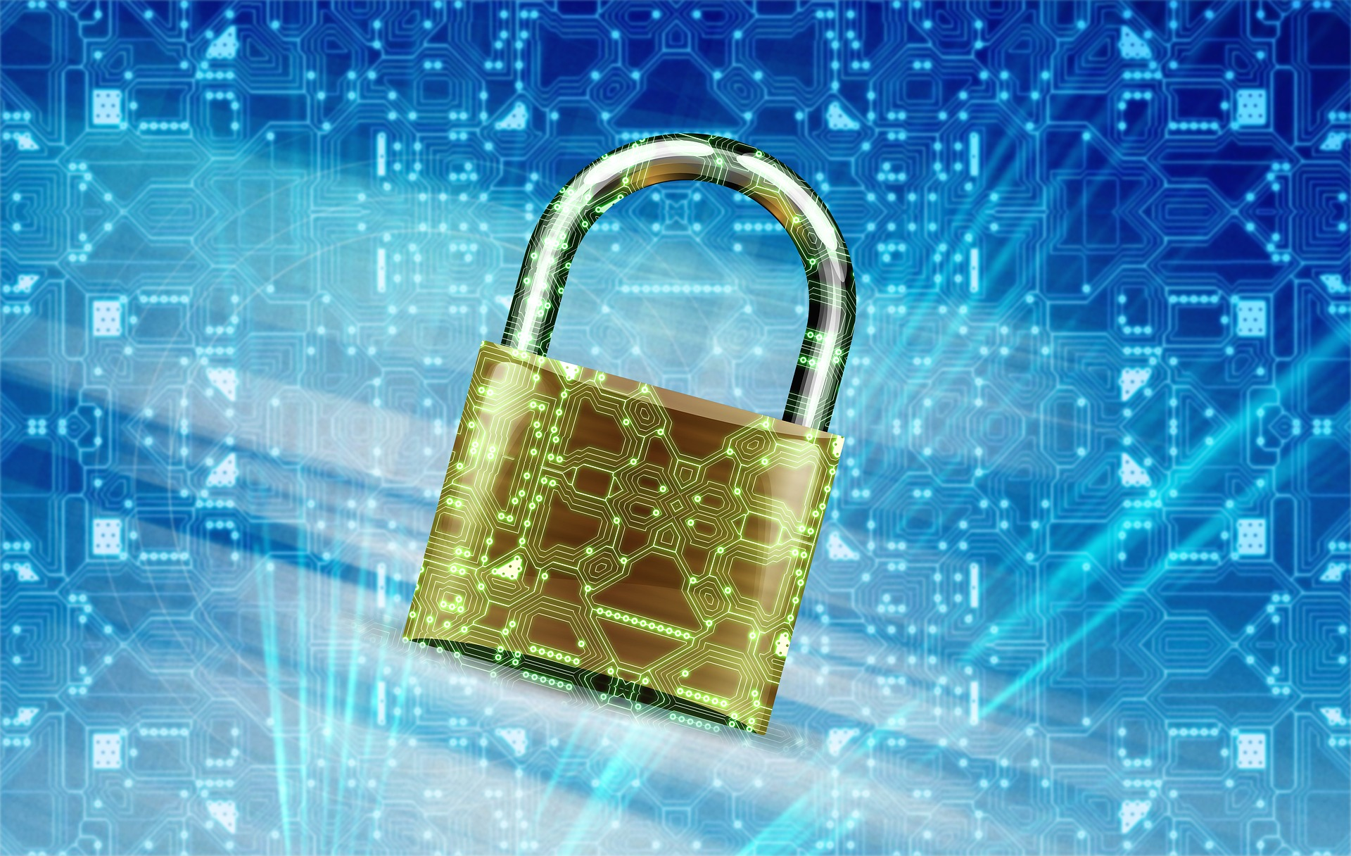 Viruses, Malwares and Protection of Systems and Web Assets - Image 1