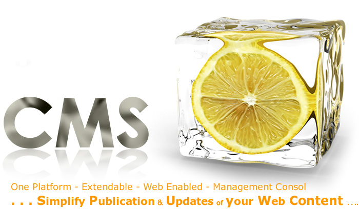 CMS Website Development- Edit Your Website to Save Money - Image 1