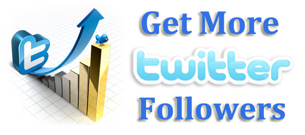 Twitter Followers- Buy Your Road To A Successful Twitter Page - Image 1