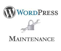 WordPress Development and Maintenance â A Must Have for Successful Online Venture - Image 1