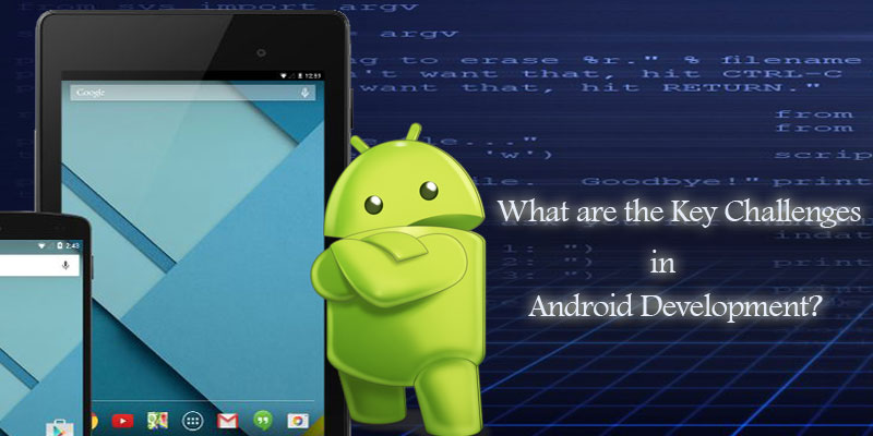 What are the Key Challenges in Android Development? - Image 1