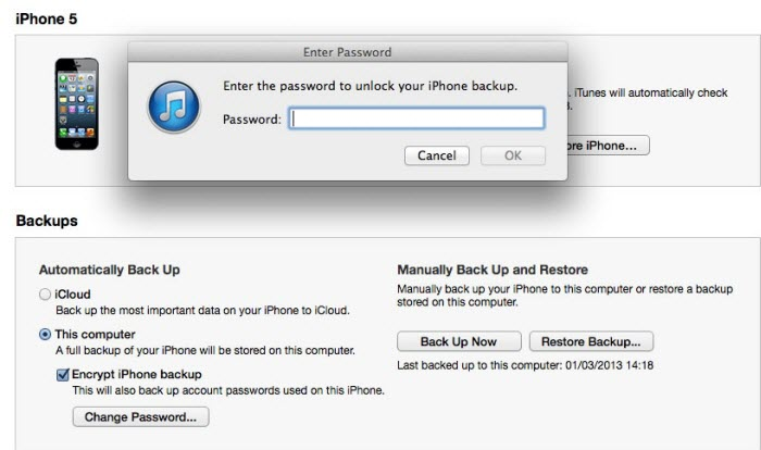 ipad reset password
