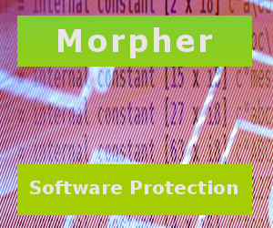 What are the right software protection services to avert piracy issues? - Image 1