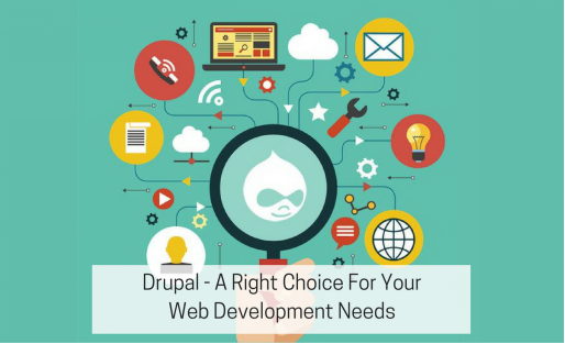Which Types Of Businesses Can Leverage Drupal Development Services? - Image 1