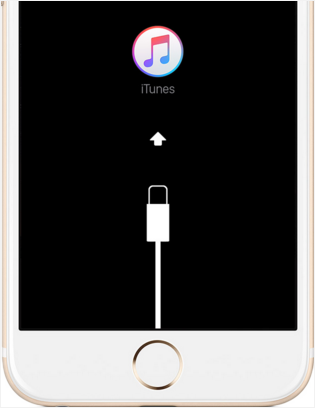 How to Unlock Disabled iPhone/iPad When You Forgot iPhone Passcode? - Image 4