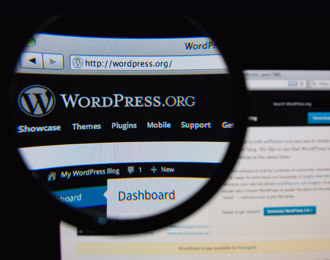 Nine Questions to Ask Before You Choose WordPress for SME - Image 1