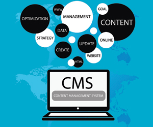 Four Success Factors for CMS Projects - Image 1