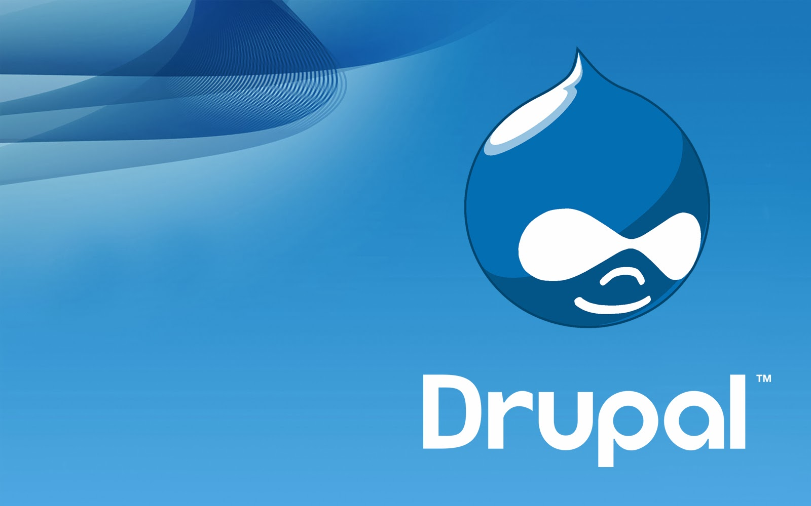 6 Mistakes of a Drupal Web Development Company Will Kill Your Business - Image 1