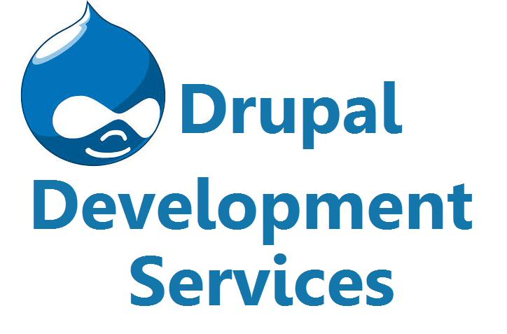 Why To Opt For Drupal Development Services - Image 1